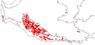 Karri forest             distribution