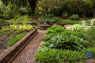 rnebourne Botantic gardens herbs