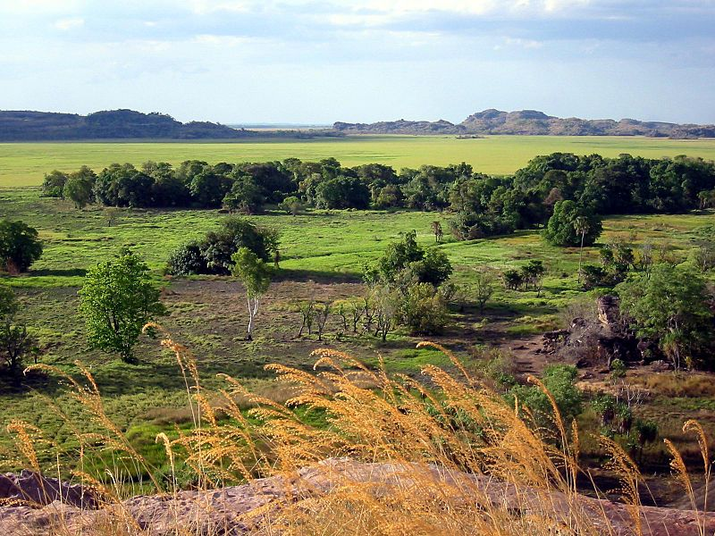 Landscape at Ubirr