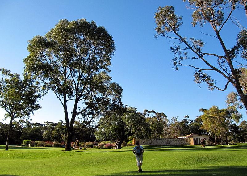 Western Australia Botanic Garden lawn