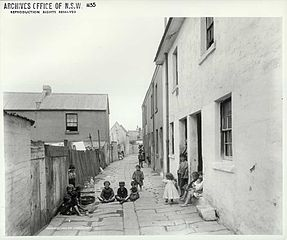 Caraher's               Lane The Rocks 1901