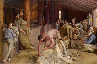Roberts' Shearing the rams